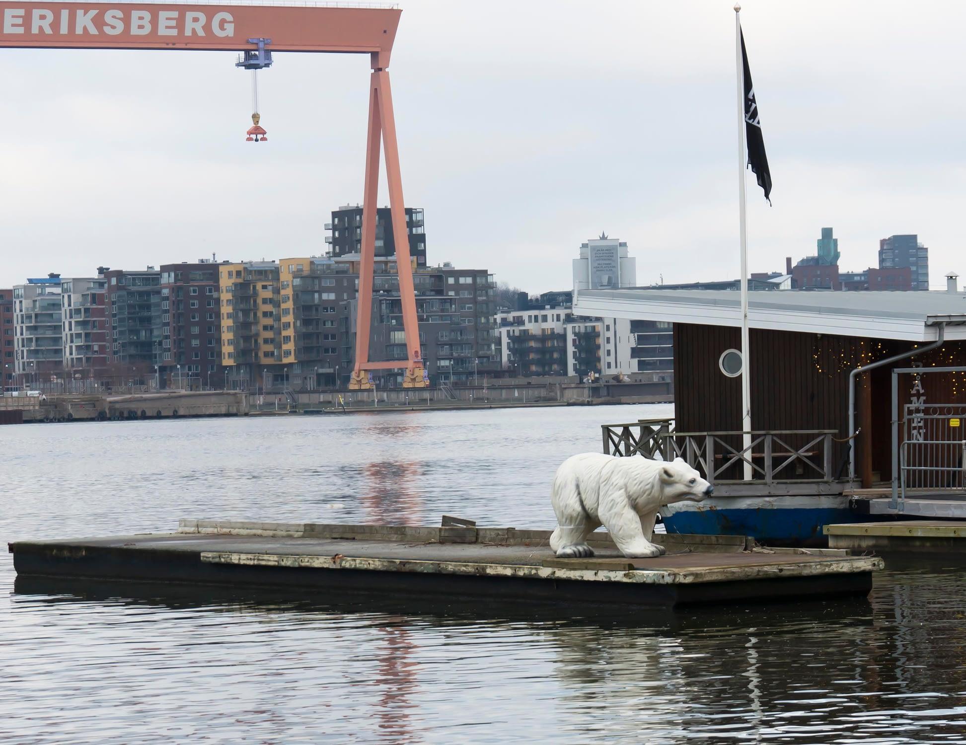 Ännu hotar inte faran att isbjörnar kommer upp pä land i Göteborg!