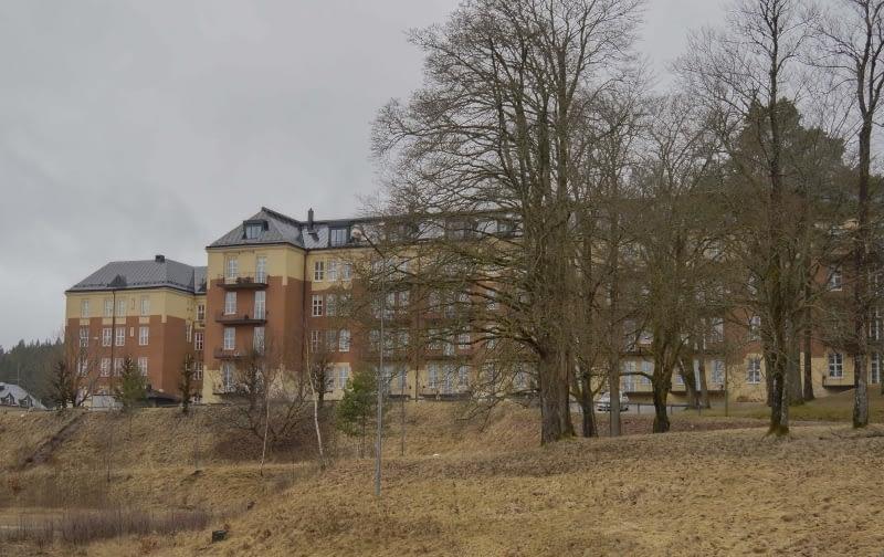 Borås regemente år 2017