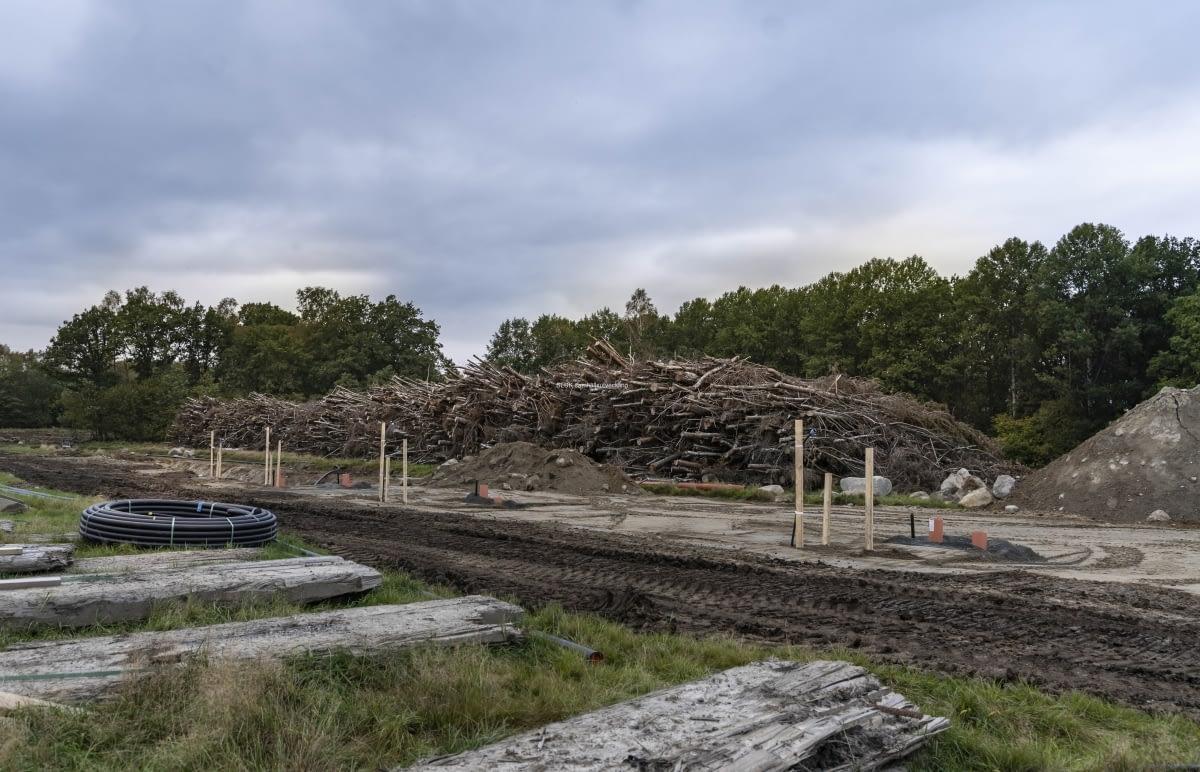 Skogen har avverkats.