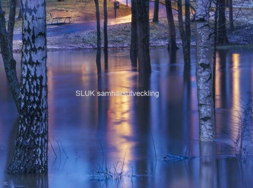 När solen gick ner och neonljusen från centrum speglades i vattnet, såg det ut så här.