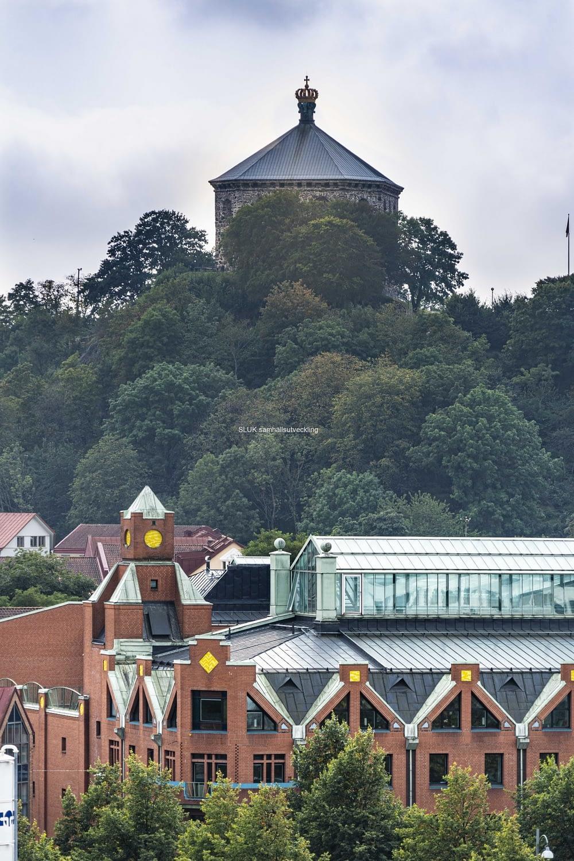 Här ser man Skansen Kronan från Kungshöjd.